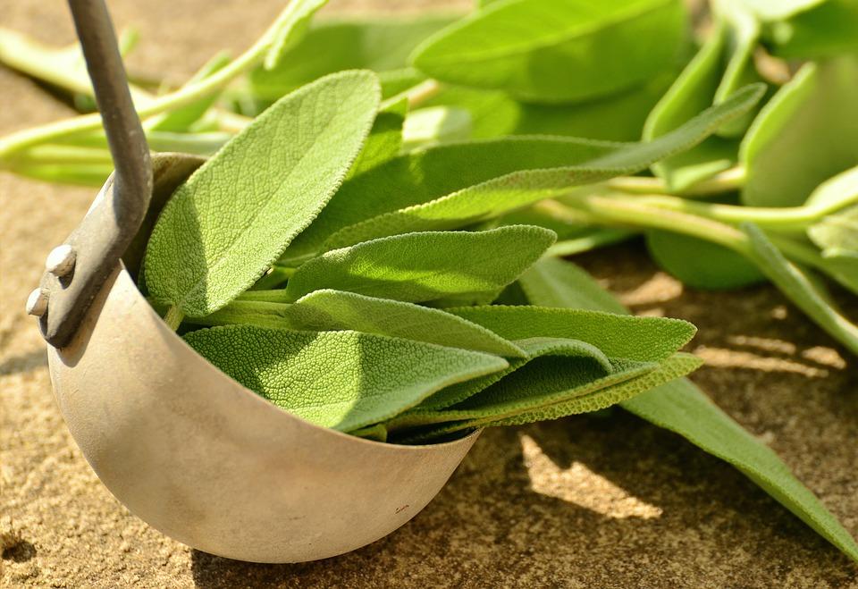 sage leaves