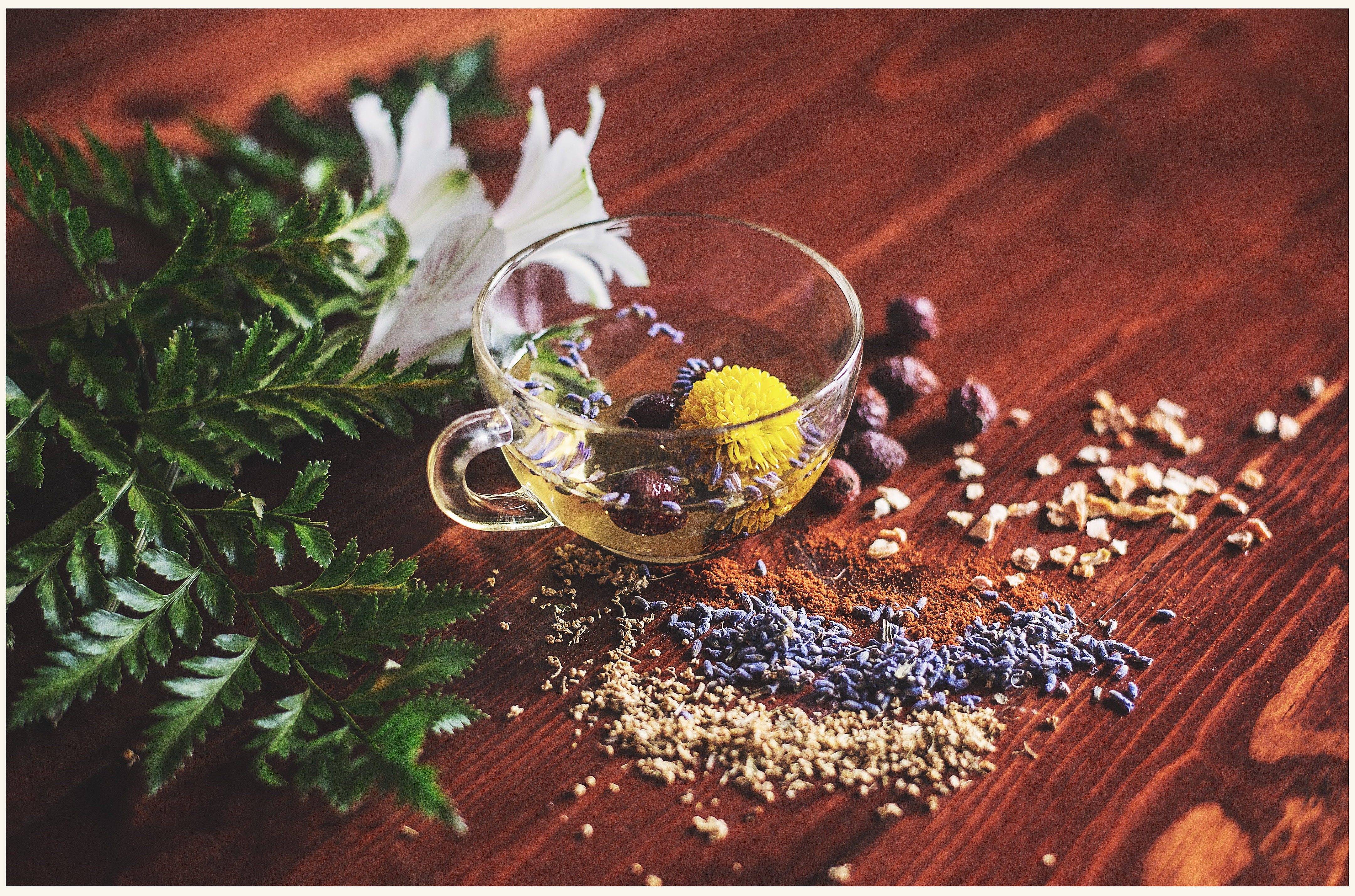 Black tea with spices, herbs and plant.