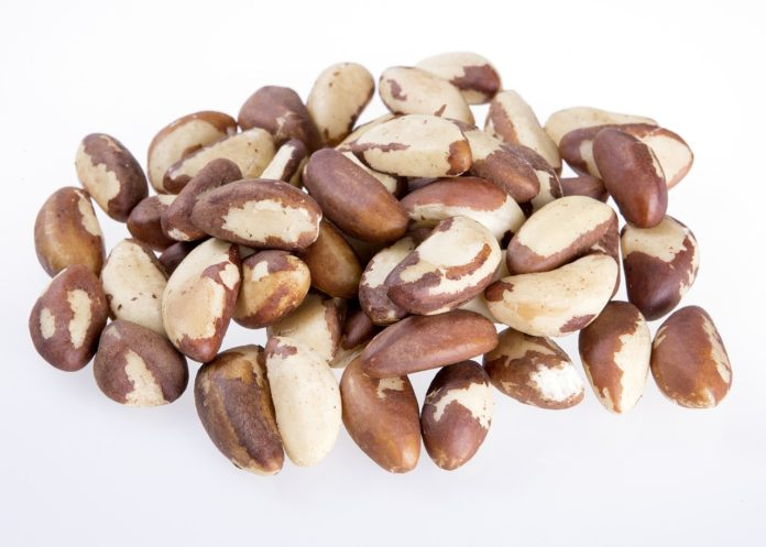 13 Benefits of Brazil Nuts