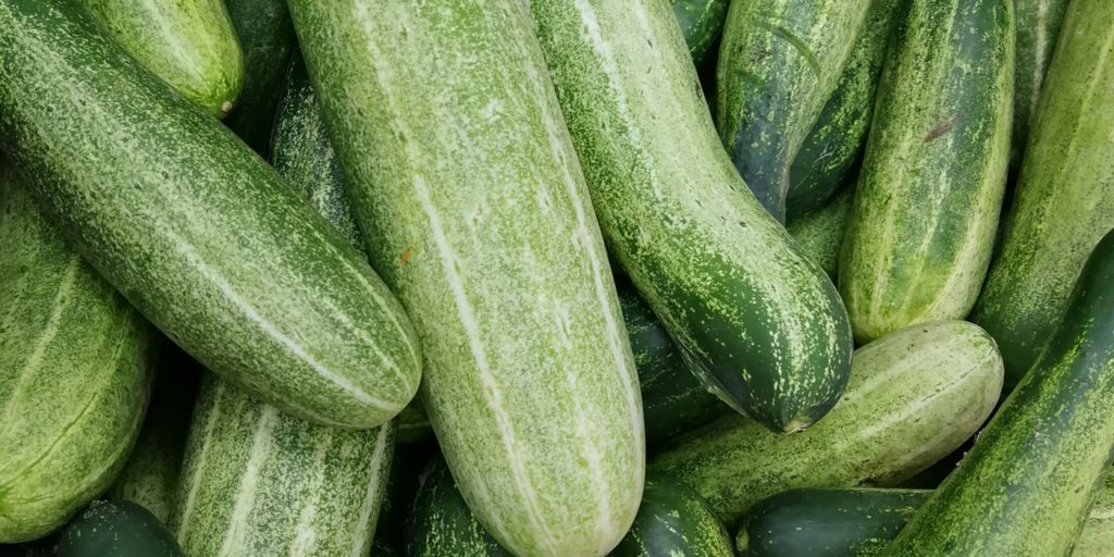 cucumbers for oily skin
