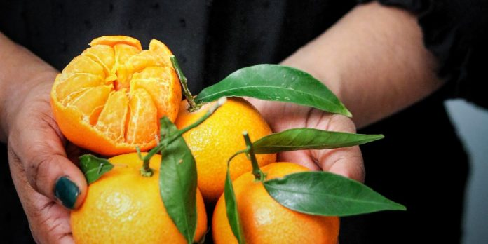 riped clementine