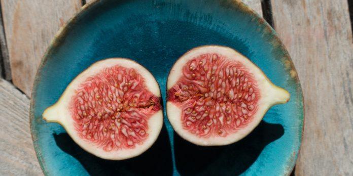 fig seed